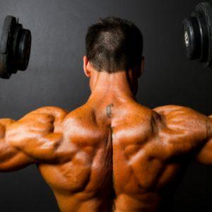 construir músculos naturalmente